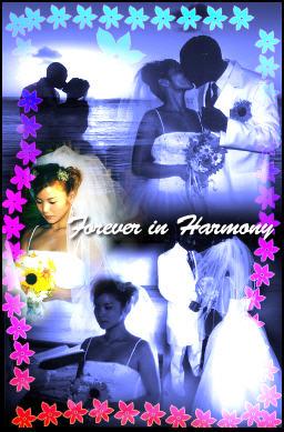 Romantic Wedding Montage
